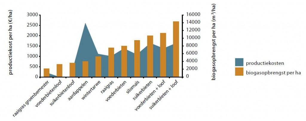 BiogasopbrengstProductiekosten