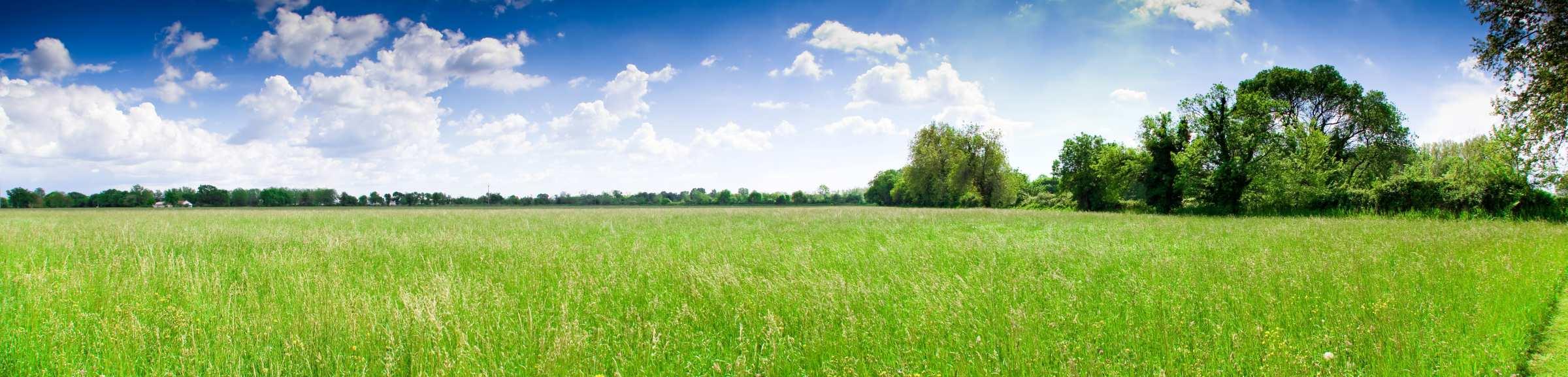 Grasland panorama in Frankrijk