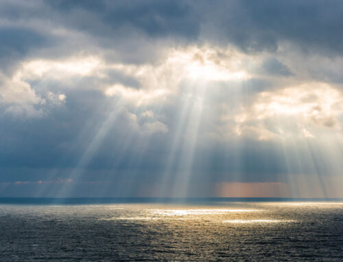 Klimaatreeks : zonnig Nederland